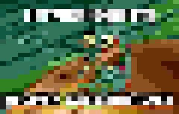 Gotcha Fam (used Pixelate on Paint net, probably Gimp has it