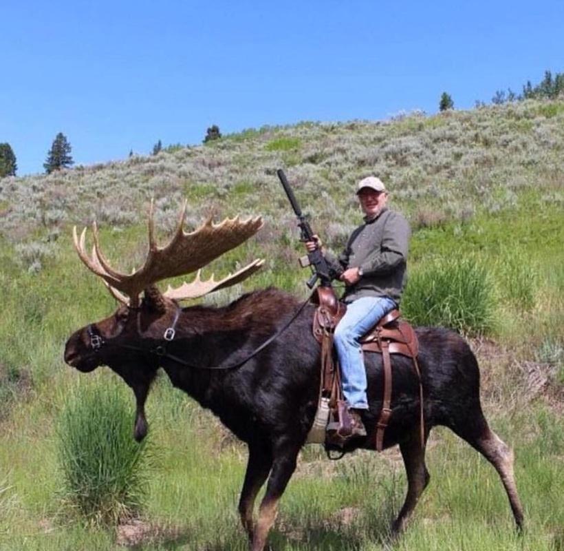 Открытка для, прикольные картинки на охоте на лося