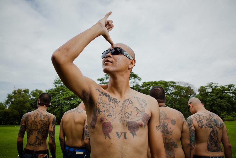 черепашки исполняют фото мексиканских банд если это